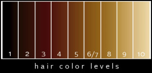 Hair-Color-Levels21
